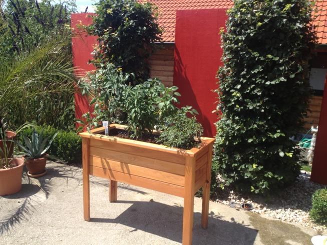 Balkonhochbeet-Terrassenhochbeet-4_fertig2