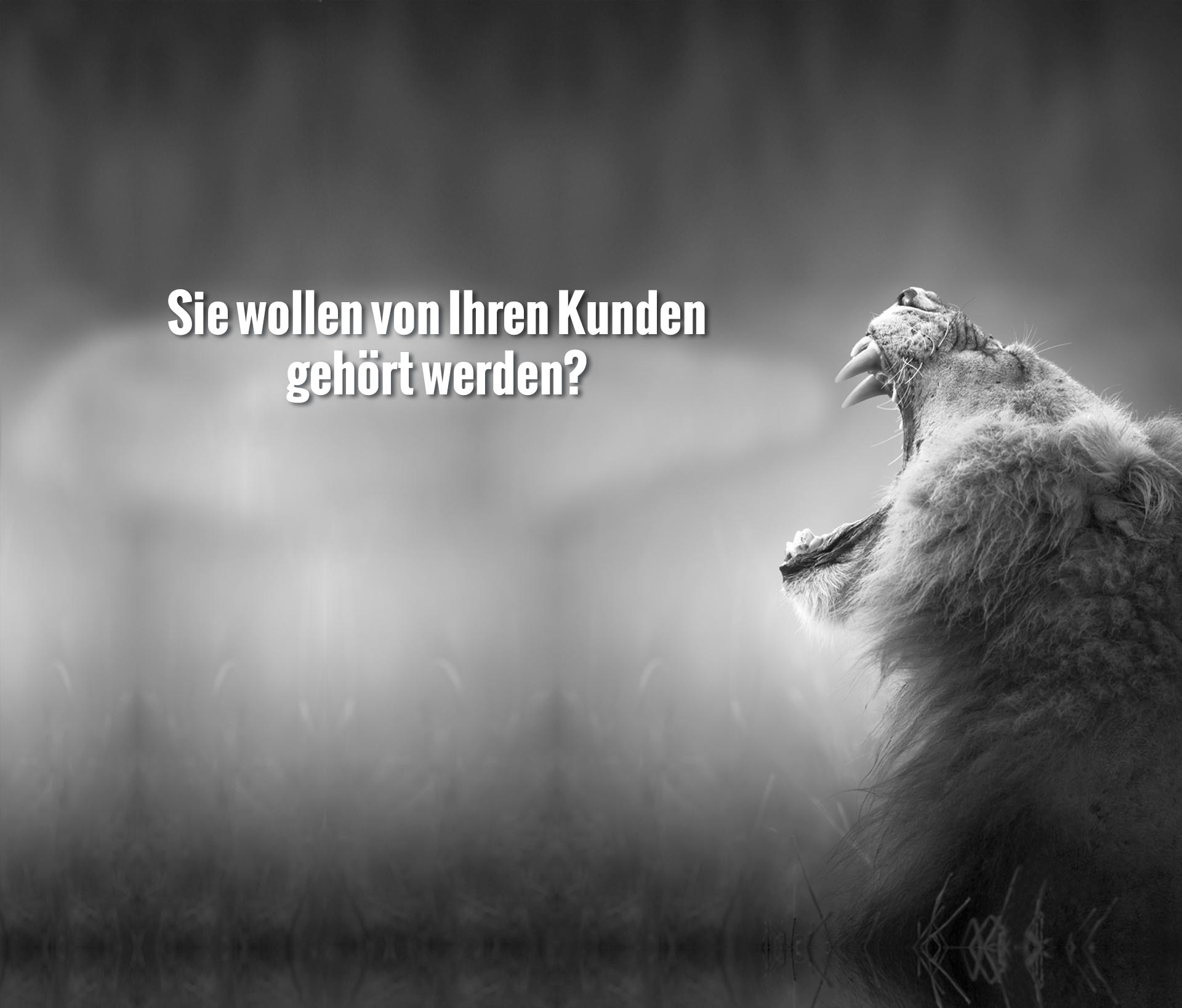 slider01_neu1